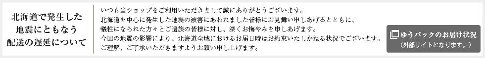 北海道で発生した地震にともなう配送の遅延について
